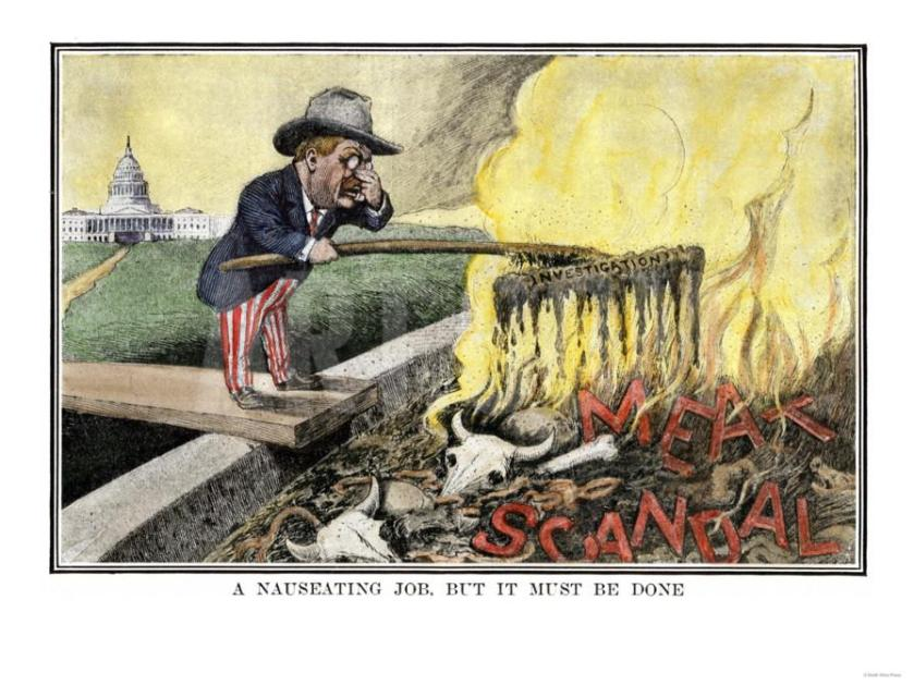 cartoon-of-president-theodore-roosevelt-as-a-muckraker-cleaning-up-the-meat-scandal_a-g-4235074-8880731